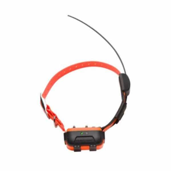 Collar Adicional Localizador GPS Numaxes
