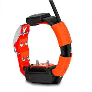 Collar adicional Dogtrace X30T